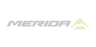 Merida1