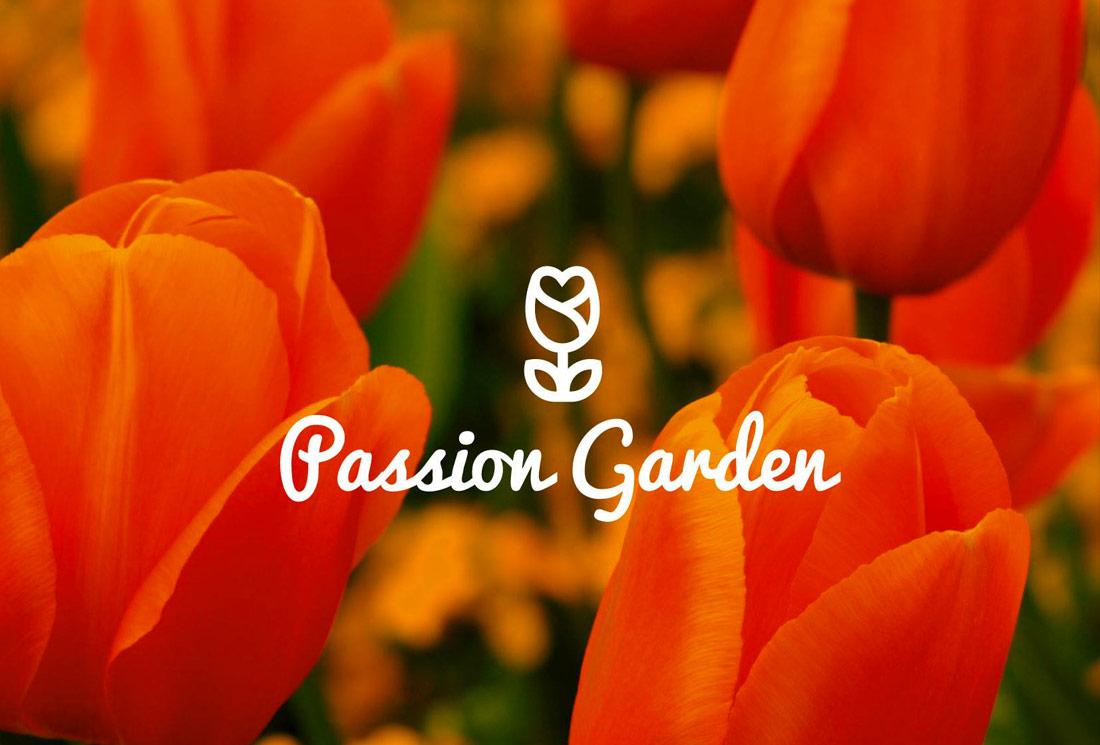 logo-desia-passion-logo-studiograficodr